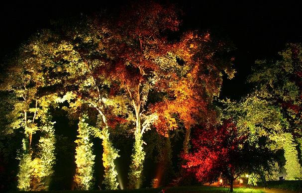 Kreative Ideen Licht im nächtlichen Garten