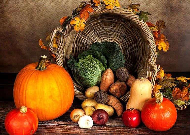 Herbstzeit ist Kürbiszeit - und Erntezeit