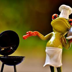Herbstgrillen ist was für Genießer mit einem Frosch als Grillmeister vielleicht?