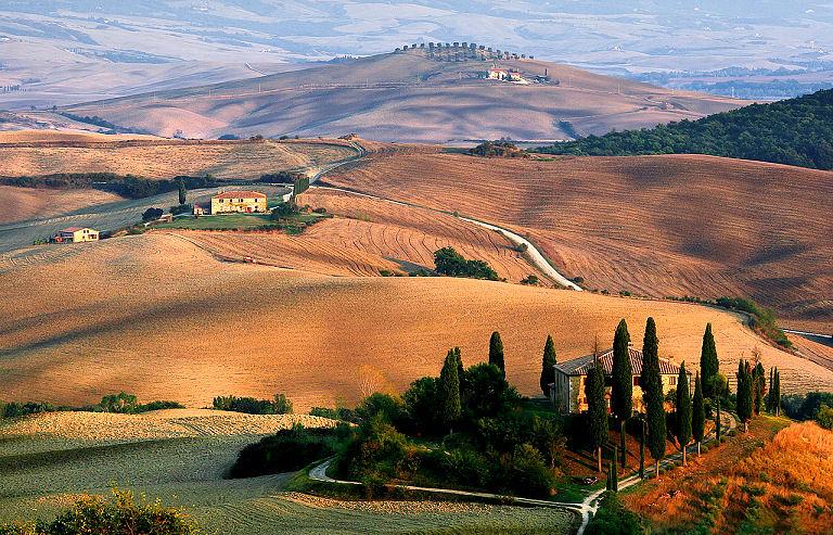 Hoch gewachsene säulenartige Zypressen in der Toskana