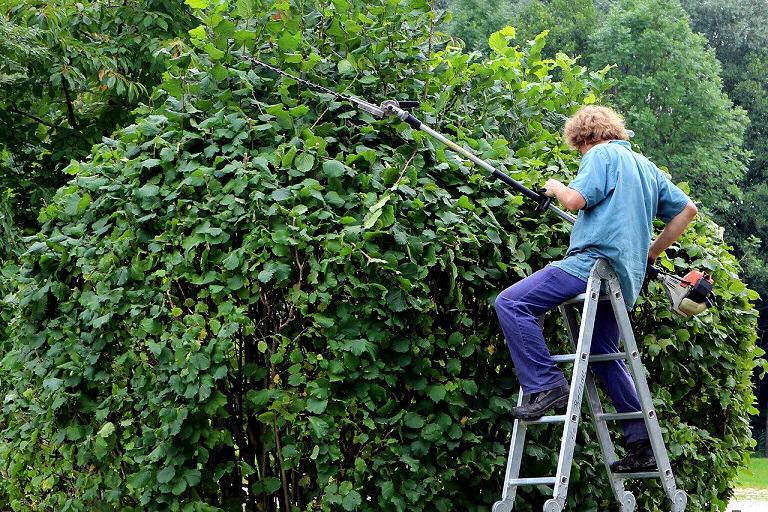 Handwerkliches Arbeiten - auch im Garten braucht man oft Schutz vor Verletzungen