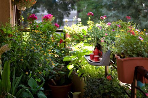 Grüner Balkon und schön naturnah