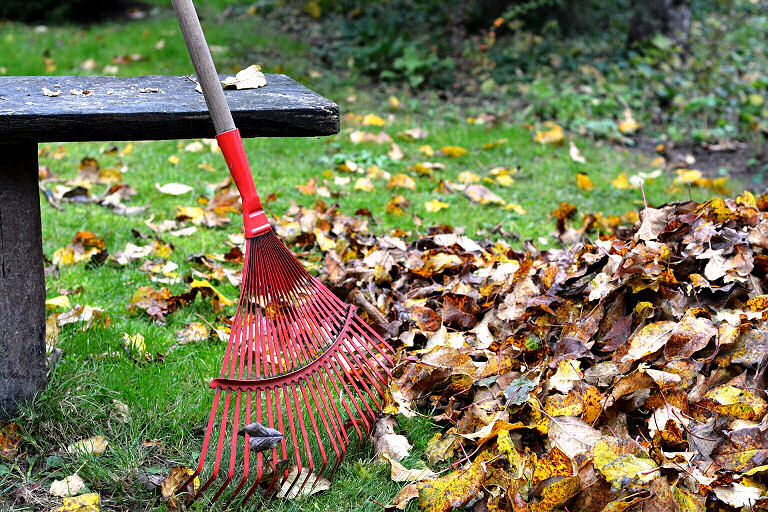 Manche Gartengeräte, wie zum Beispiel so ein Rechen für das Laub braucht man einfach für die Gartenarbeit.